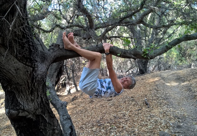 """Joan Virginia Allen is one of four women who worked regularly with """"Dynamic Aging"""" author Katy Bowman to improve their dexterity, flexibility and core strength. Allen became one of four credited co-authors of the book. Photo: Willis Allen."""